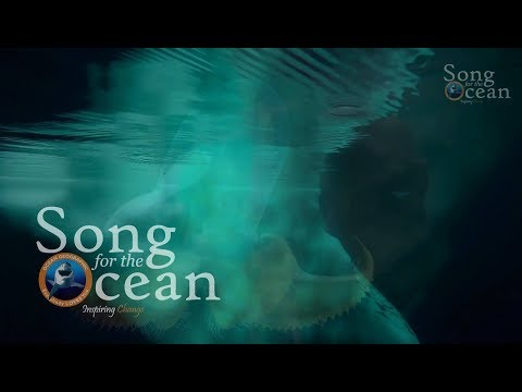 Song for the Ocean 8 June 2018 World Ocean Day