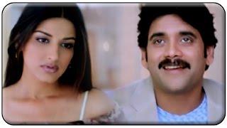 Nagarjuna and Sonali Bendre Best Comedy Scene    Manmadhudu Movie