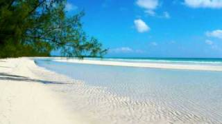 Nature Sounds - Seashore