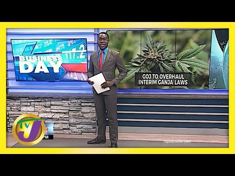 Jamaican Gov't to Overhaul Interim Ganja Laws | TVJ Business Day - June 4 2021