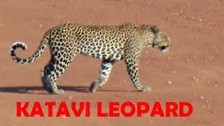 Katavi Safari