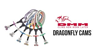 DMM - Dragonfly Cams