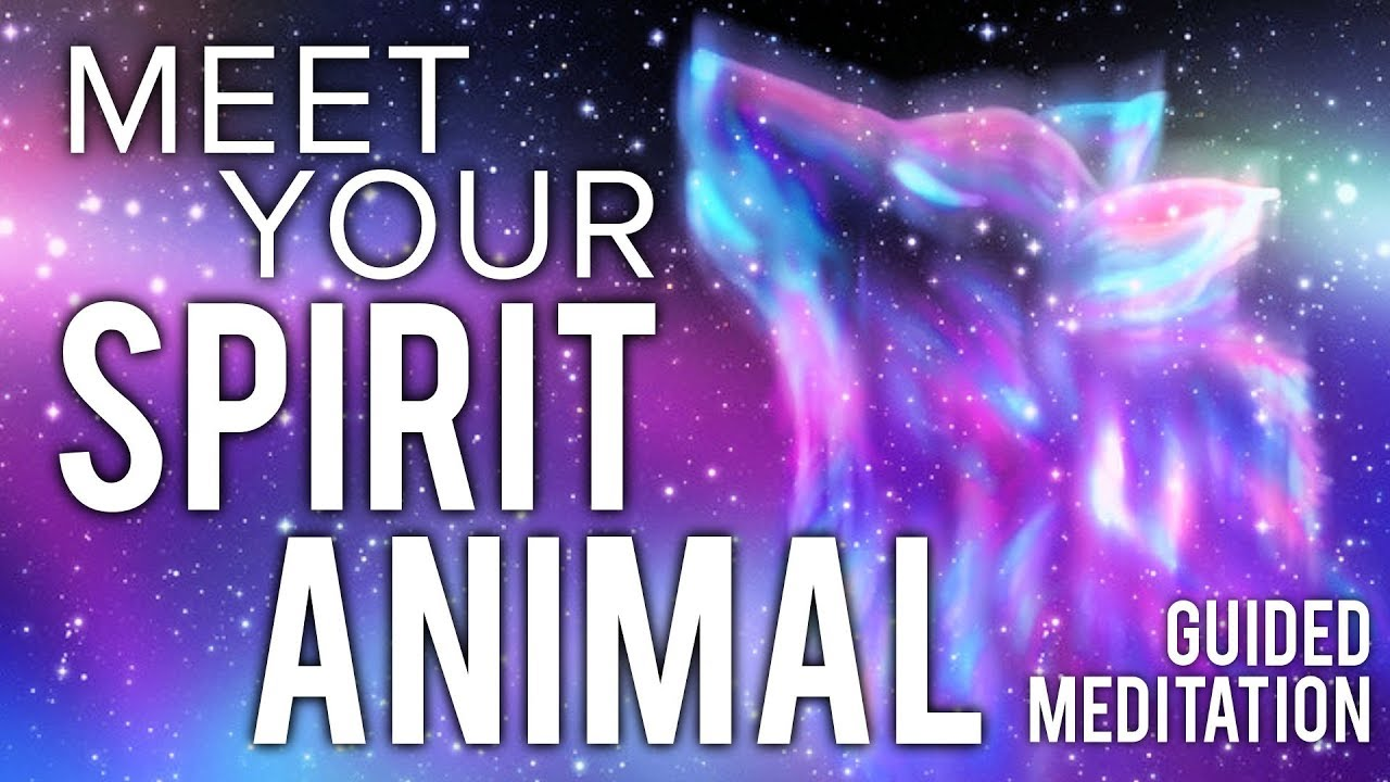 Meet Your SPIRIT ANIMAL Guided Meditation. Communicate ...