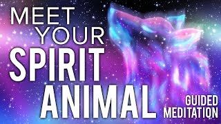 Meet Your SPIRIT ANIMAL Guided Meditation. Communicate With Your Animal Spirit Guide.