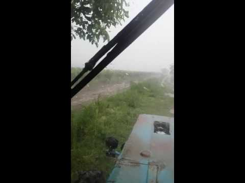 Tovuz rayonu asagi quscu kendine dolu dusdu