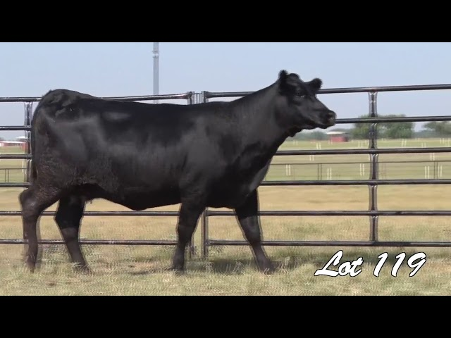 Pollard Farms Lot 119