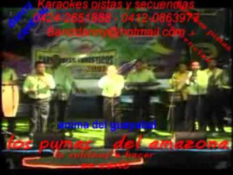 anima del guayabal los pumas del amazona karaoke pista demo