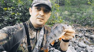 Ловля окуня на спиннинг Рыбалка на канале имени Москвы
