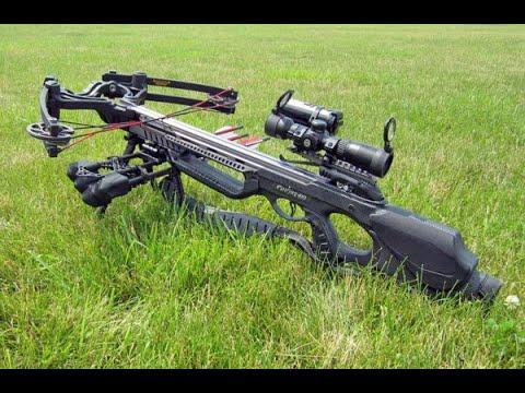 Стрельба тренировочная из рогатки,лука,арбалета