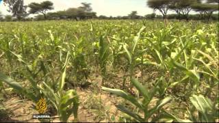 Al Jazeera - Concerns for millions over drought in Ethiopia