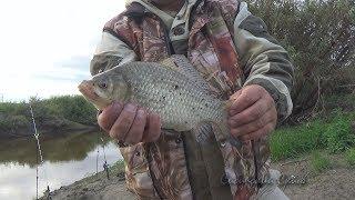 Рыбалка в Деревне На Карася и Злой Воробей