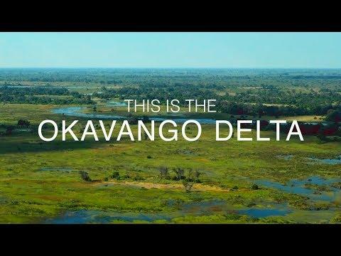 THIS IS THE OKAVANGO DELTA