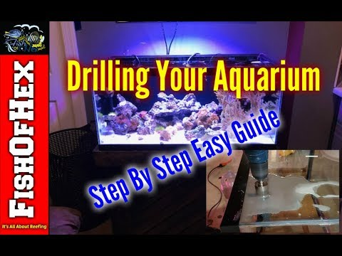 Drill Any Aquarium With This Easy Step By Step Guide | 40 Breeder Reef Upgrade