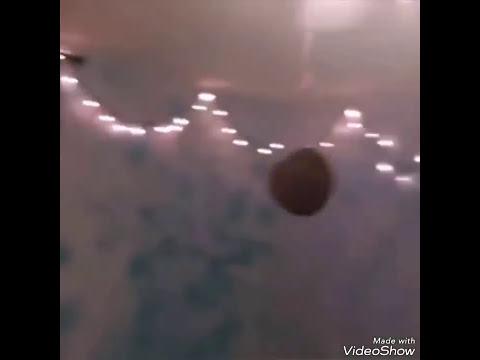 A potato flew around my room (10 minutes)