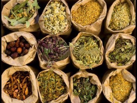 The Secrets Of Herbal Medicine : Best Documentary Of All Time