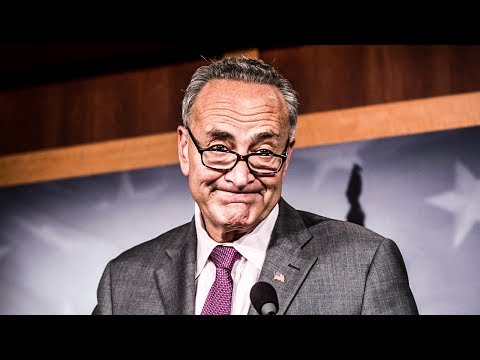 Chuck Schumer Finally Admits The Truth, Says Democrats Must Blame Themselves For 2016 Loss