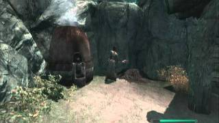 Skyrim: Heavy Armor Trainers