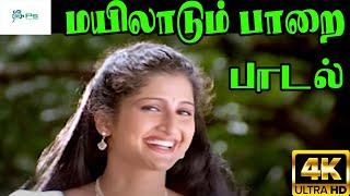 Mayilaadum Paarai  ||மயிலாடும் பாறை || Chithra ||Love  H D Song