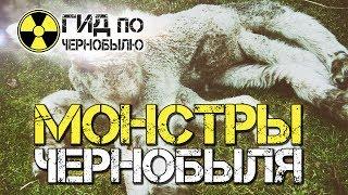 Монстры Чернобыля(https://chernobylguide.com/ru/monstry_chernobylya.html В годы трагедии на Чернобыльской АЭС последним вождем тогдашнего СССР был..., 2016-12-07T17:01:24.000Z)