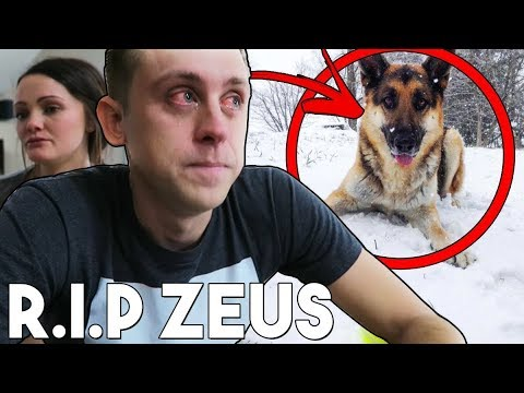 Thumbnail: Last Footage Of Zeus Atwood! (Roman Atwood's Dog) RIP :( Please watch