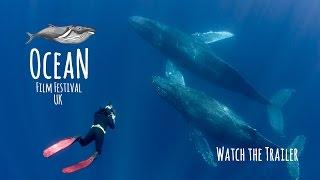 Ocean Film Festival - UK Tour Trailer - 2016