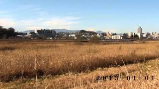 多摩川左岸から関戸天守台を望む(2012.6.16-2013.6.8)