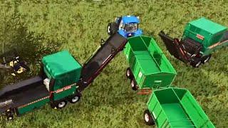 #50 - ARRIVA NORA AD AIUTARCI CON LA LEGNA CON ANCHE ROBY -  FARMING SIMULATOR 19 ITA RUSTIC ACRES