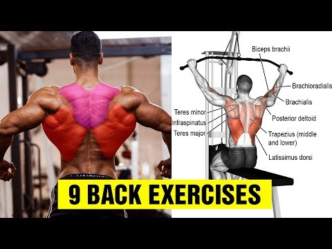 9 Exercises To Build A Big Back Gym Body Motivation