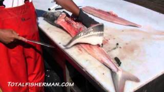 How To Fillet A Sturgeon