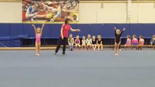 Спортивная гимнастика девочки 2010 г.р.