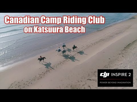 Canadian Camp Riding Club on Katsuura Beach shooting by DJI Inspire2(空撮してみた!その59)