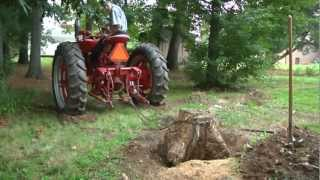 Dolphus and the Red Tractor (Ronald Rousting a Stump) Farmall M Delight