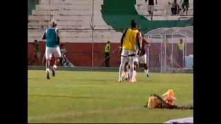 Terremoto en Ecuador 7.8 : Portoviejo | Video del momento del temblor, Estadio Reales Tamarindos