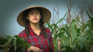 Phim Hài Tết | Làm Thơ Tặng Gái | Phim Hài Mới Hay Nhất