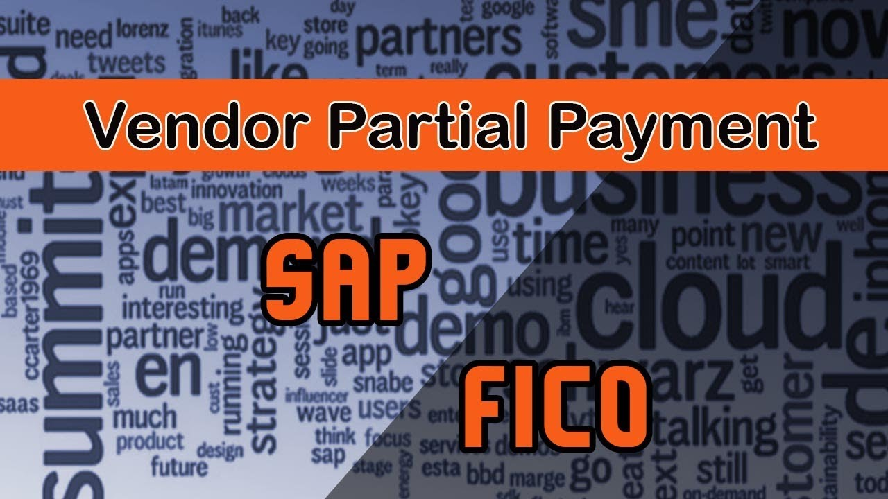 Sap FICO | Working of the Payment Program | Vendor Partial Payment |  Clearing Document