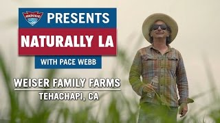Naturally LA: Weiser Family Farms