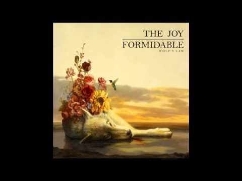 The Joy Formidable - The Ladder Is Ours (Audio)