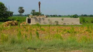 Pakistani Punjab Village Streets & Roads View | Rural Life