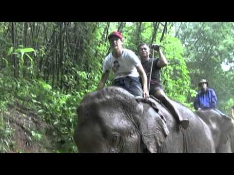 Mahout Training Class - Golden Triangle, Thailand