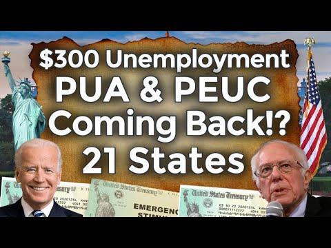Unemployment Coming Back!? $300 UNEMPLOYMENT BENEFITS EXTENSION UPDATE PUA PEUC FPUC STATE BOOST