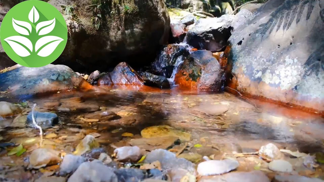 Small Waterfall. [10 hours] Stream Sounds (White Noise for Sleeping)
