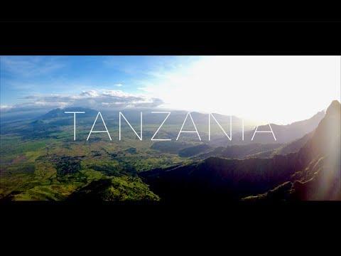 Реки Танзании: крокодилы, бегемоты и пятнистый леопард - фото