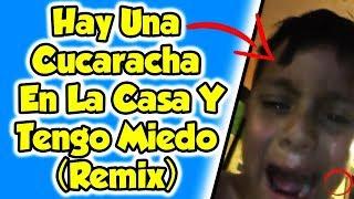 Hay Una Cucaracha En La Casa Y Tengo Miedo (Remix)
