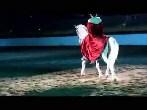horse expo 2015.wmv