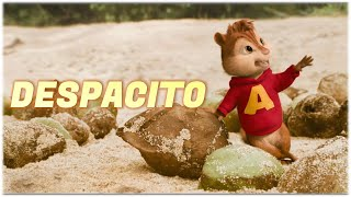 Baixar Despacito - Luis Fonsi ft. Daddy Yankee | Alvin and the Chipmunks