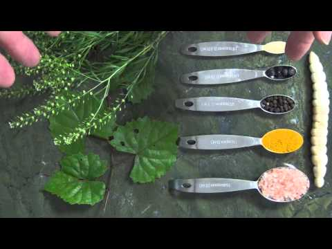 Eat The Weeds: Lacto-Fermentation Video: 146