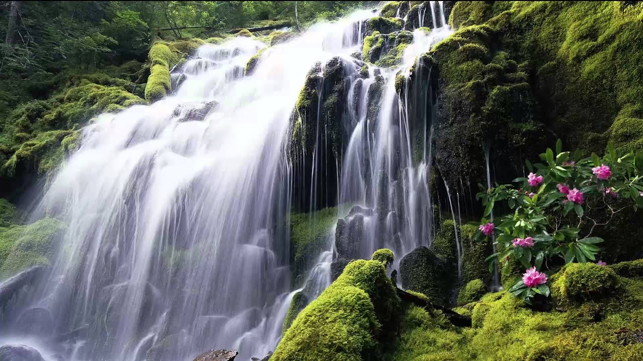 Nature Relax Sounds - Loud Waterfall - Natural Meditation ...