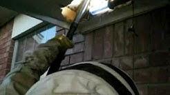 yukon bee removal 0001