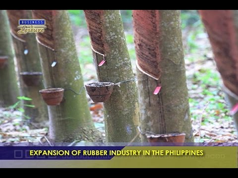 EXPANSION OF RUBBER INDUSTRY IN THE PHILIPPINES -  BIZWATCH