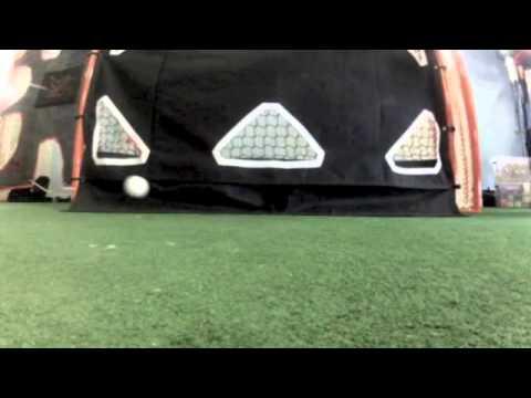 Predator Lacrosse Goal LAX R.A.T (Reflex Automatic Target)